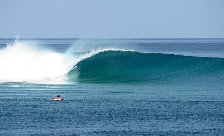 surfmaldive2